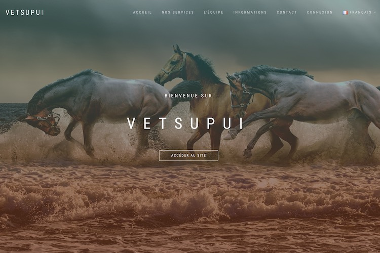 VetsupUI | Application web : https://www.vetsupui.com